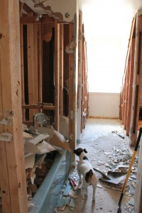 Tiles almost removed