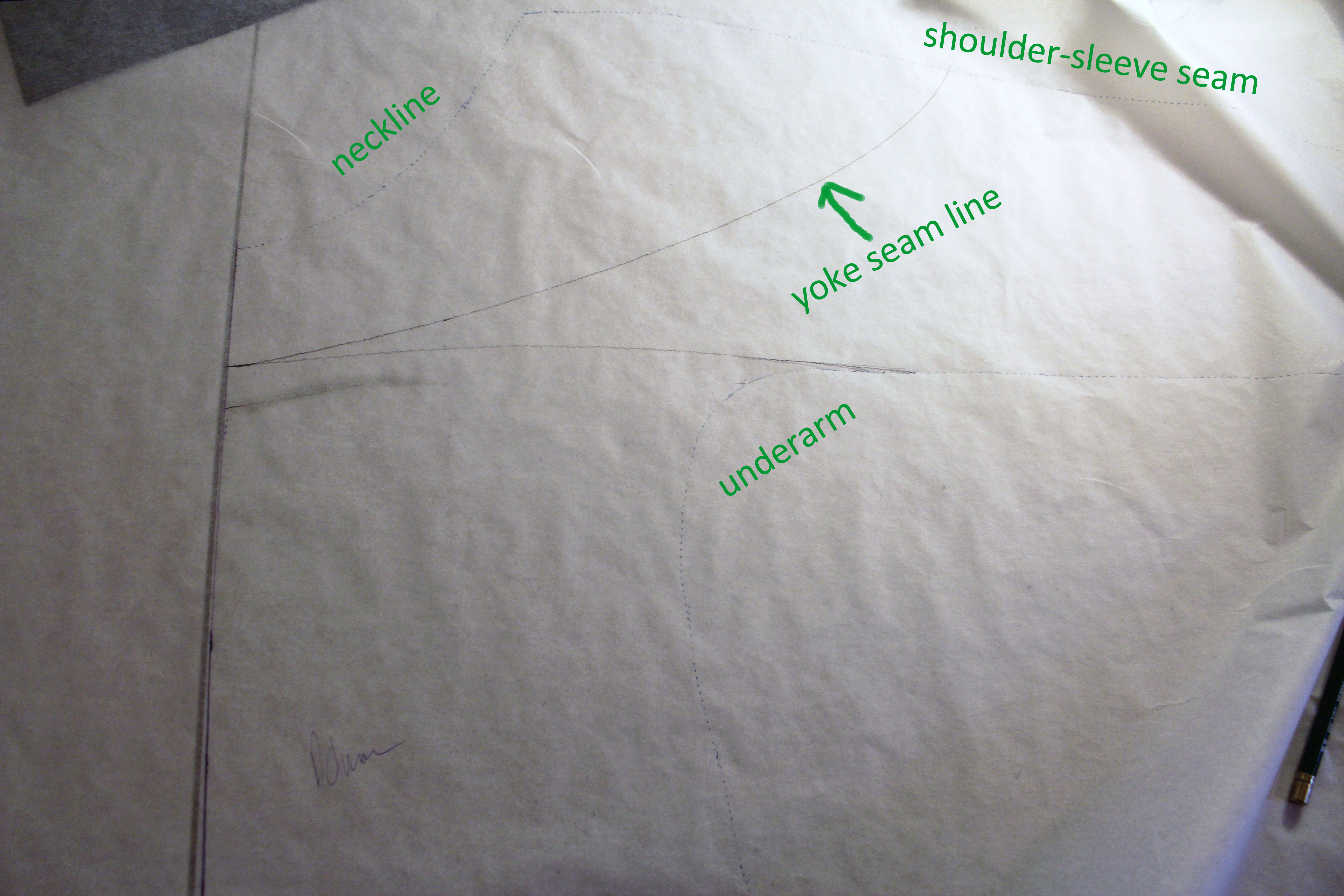Draw your desired yoke seam line, and cut out the yoke and body of the shirt along the line.
