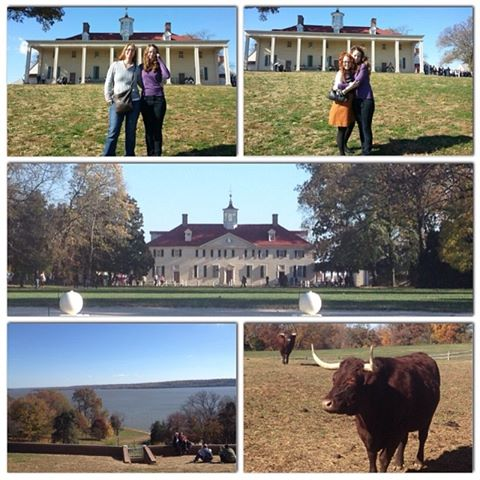 Laurie's Instagram collage of the day at Mount Vernon